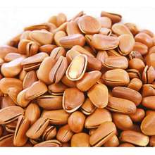 100% Pure Natural Wild Factory Wholesale Chinese Pine Nuts