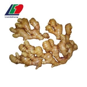 GAP Certificated Ginger Root Wholesale Price, Wholesale Ginger Price, Ginger Wholesale