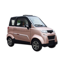 New Model Low Price 100 Km H Electric Car Eec Lithium Automobile One Person Electric Car for Family