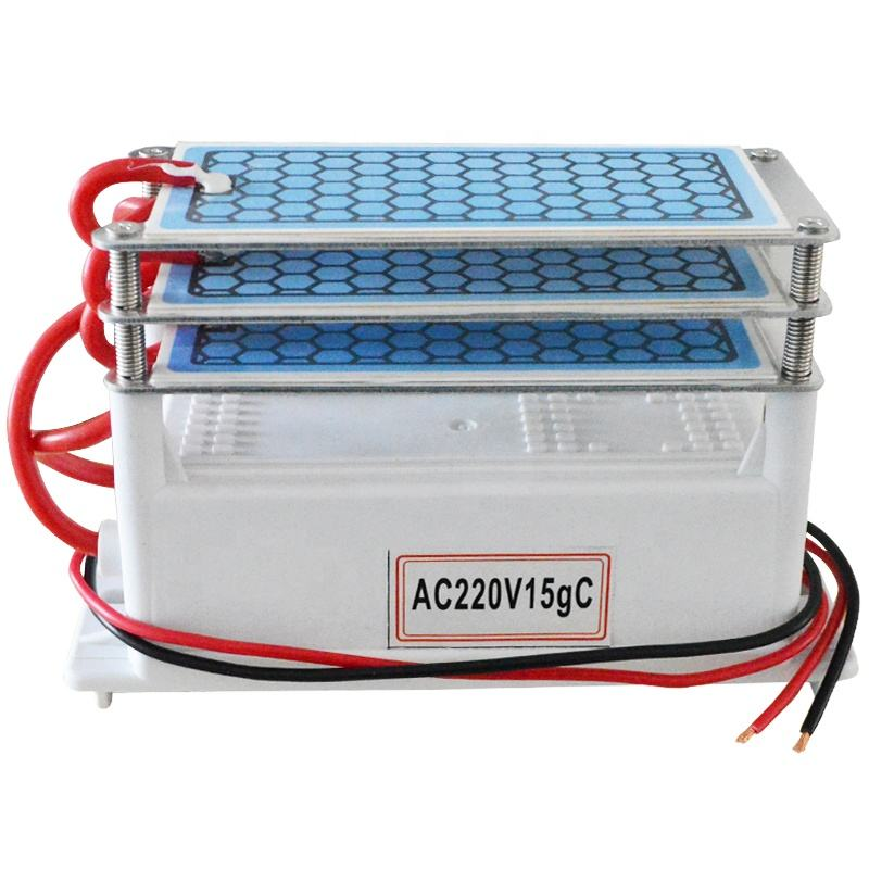 HF120 DIY Double Integrated Ceramic Plate Portable 220V 110V 10G Ozone Generator