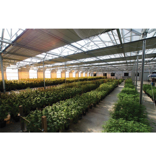 Light Deprivation Greenhouse Companies Steel Frame Production Qualified Agricultural Light Deprivation Greenhouse