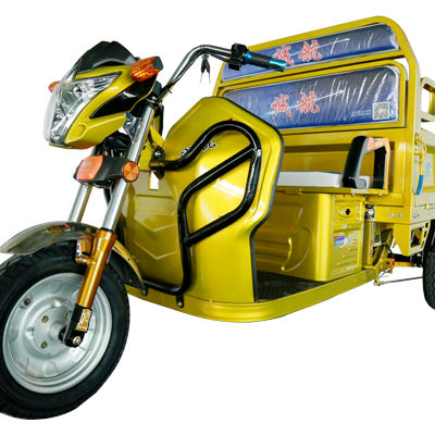 China cargo motorcycle truck big wheel tricycle for adult other tricycles