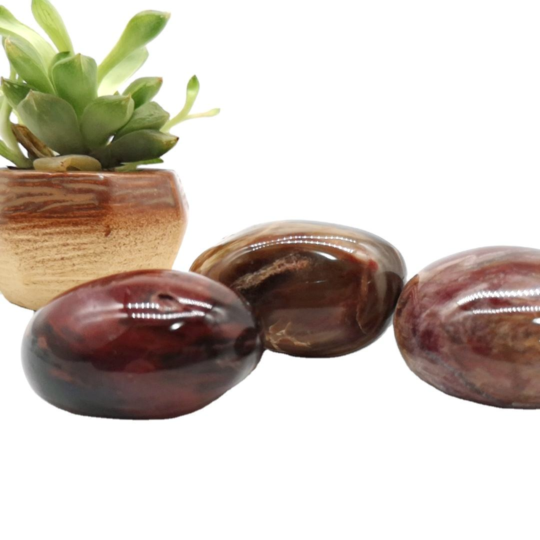 Natural Polished Palm Red Petrified Wood Fossil Crystal Palm Stone For Healing