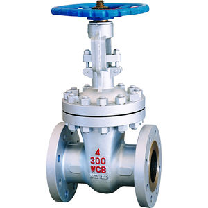 Professional custom cast steel flanged gate valve with reasonable prices