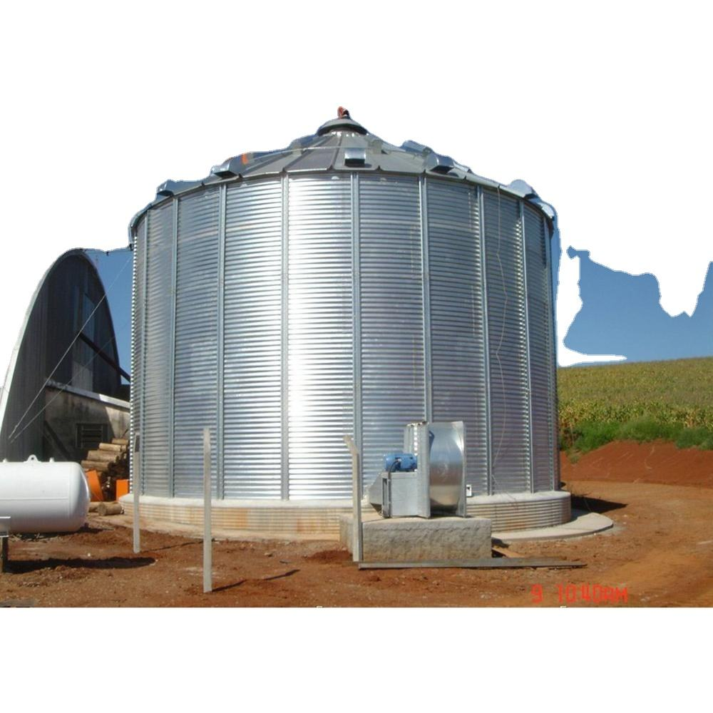 Leading Steel Silo Manufacturers, More Than 300 Finished Projects For Visiting