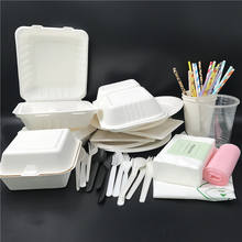 Luxury 10  inch square takeaway sugarcane bagasse eco friendly disposable biodegradable plates sets dinnerware for party