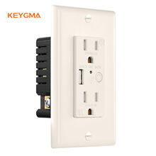 America Wifi Smart Outlet Socket Factory Price In Wall Plug Socket Outlet