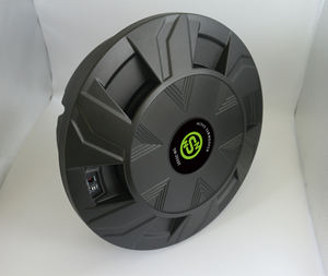 NSN inch price bass speaker car active spare tire subwoofer with aluminum box