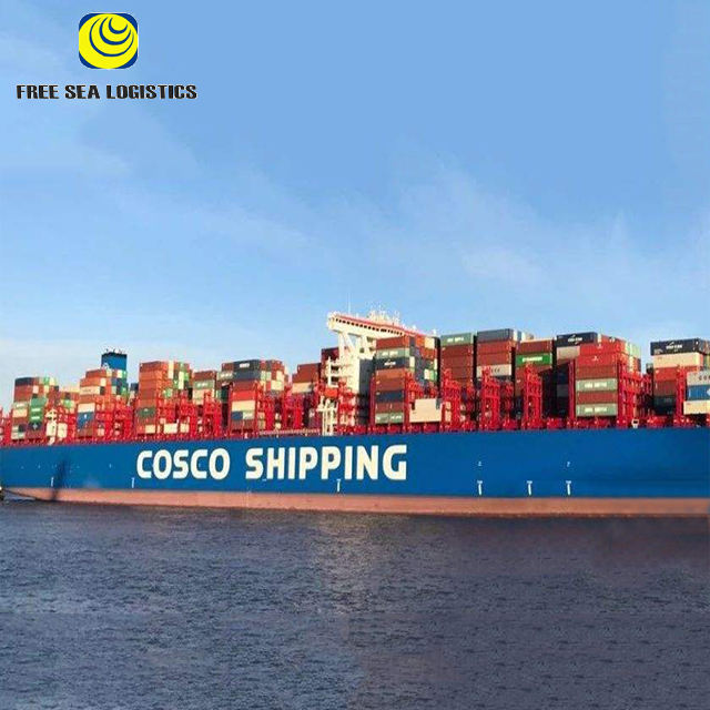 International Freight Forwarder export/import from china to HAMBURG/ROTTERDAM/ANTWERP/LE HARVE/SOUTHAMPTON by sea