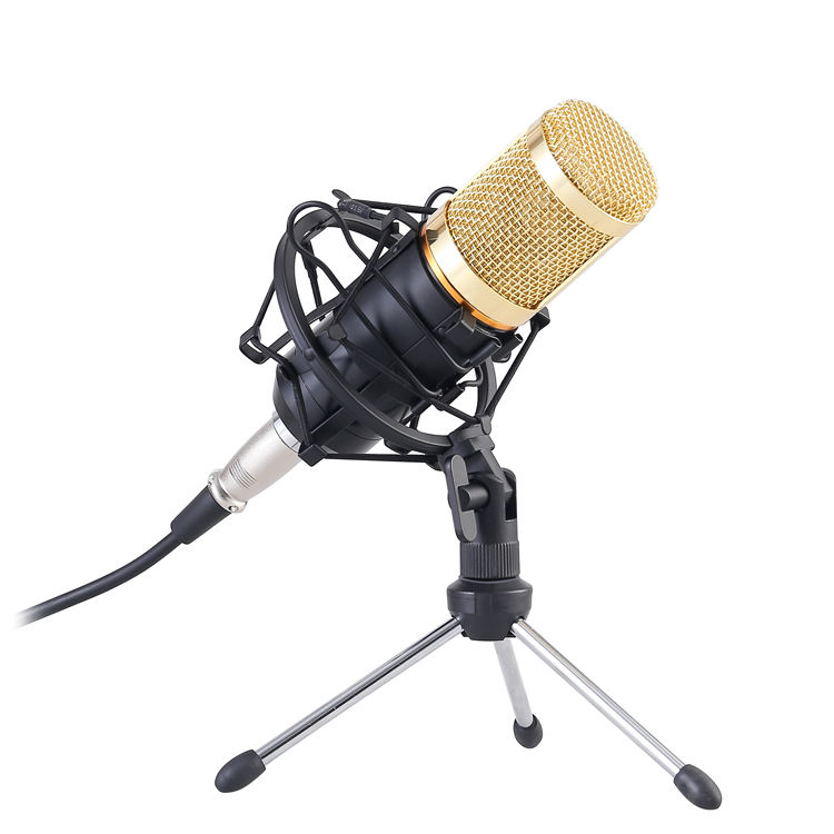 BM800 Professional USB Condenser Microphone Studio for webcast live recording