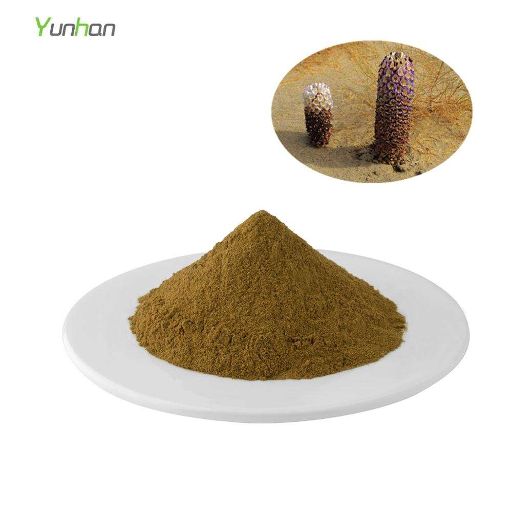 Low Best Price Herbal Organic 10:1 Cistanche Tubulosa Extract Powder Bulk Cistanch Deserticola Extract