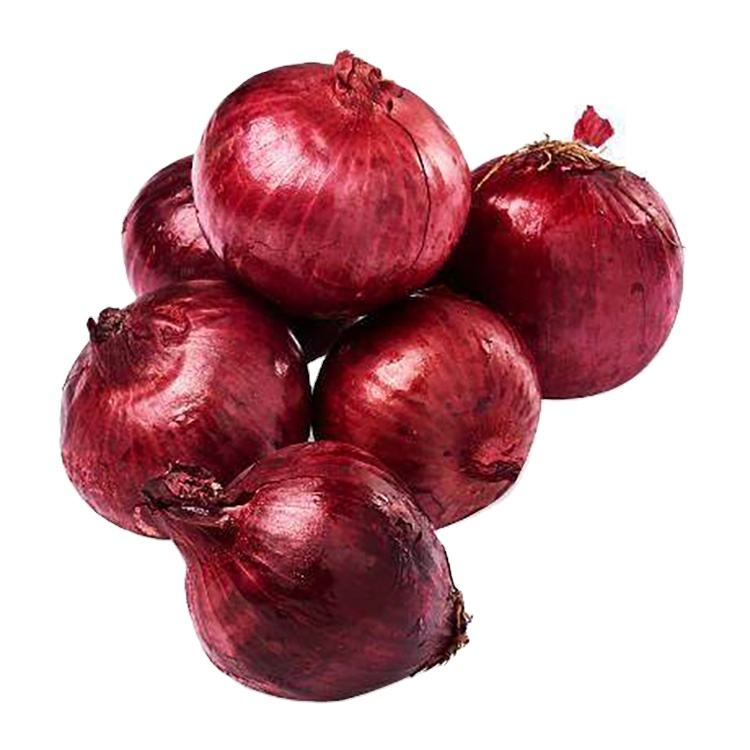 Wholesale Fresh Red Onion Per Ton Price by Onion Exporters