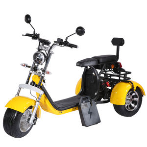 china cheap adults 3 wheel electric tricycle price