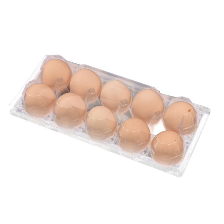 custom Plastic wholesale quail chicken egg packing cartons