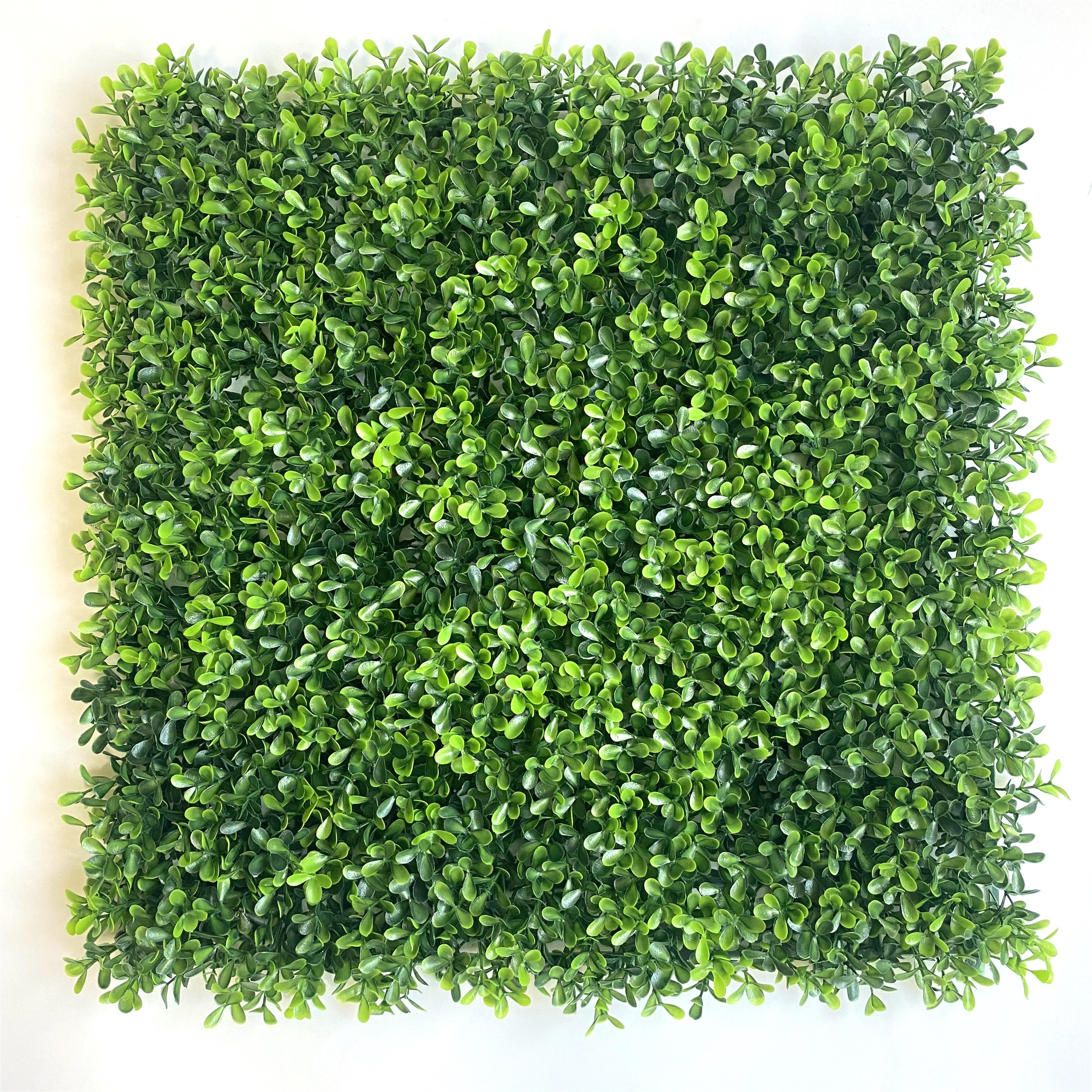 New designs faux topiary hedges 50x50cm artificial boxwood panels for indoor and outdoor home exterior wall hanging decoration