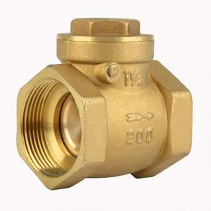 COVNA 2 inch Brass Non-Return Flap Check Valve with Symbol & Drawing