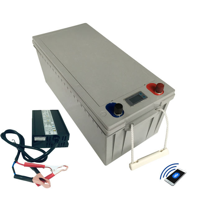 Customized battery pack lifepo4 12V 24v 200AH 300AH lithium battery with BMS