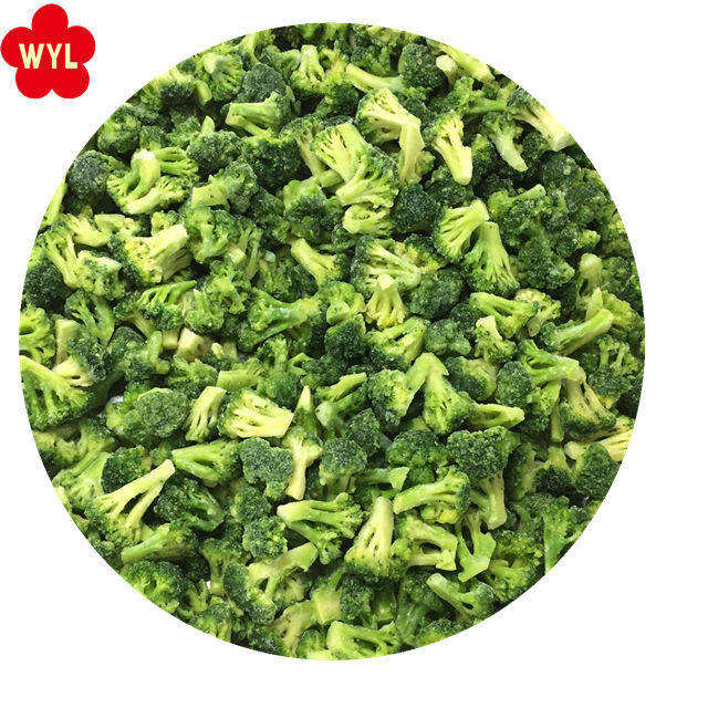 Wholesale IQF broccoli