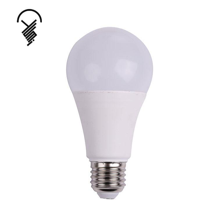 China led manufacturer Plastic led bulb light E27 B22 12v dc led light bulb 3 watt led bulb