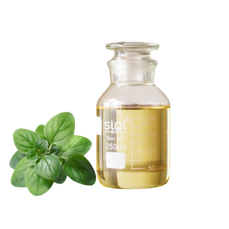 Manufacturer Offer Pharmaceutical Grade Organic Oregano Essential Oil