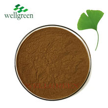 Chinese Herbs Supplier Bulk Ginkgo Biloba Extract 10:1 For Improving Memory