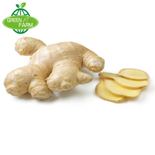 AN QIU fresh ginger wholesale price sales, delivery fast