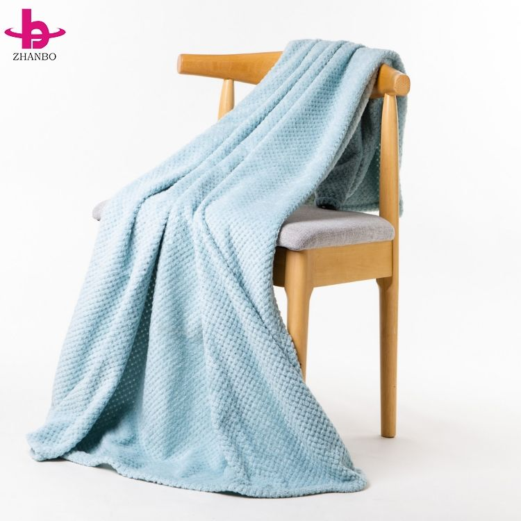Jacquard Pattern Light Blue Urban Style Pineapple Flannel Blanket With Concept Image