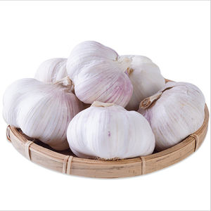 Chinese Low Price Fresh Garlic White Garlic Normal White Garlic