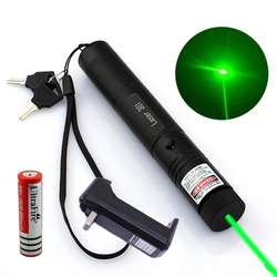 Powerful 301 Green Laser Pointer Pen 532nm 1mw Adjustable Focus & 18650 Battery + Charger Adapter Set Free Shipping