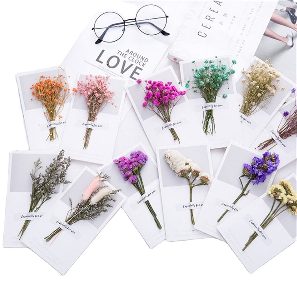 New Styles Dried Flowers Greeting Cards