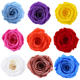 Yunnan Culinan wholesale selected A grade preserved rose 4-5cm preserved roses head