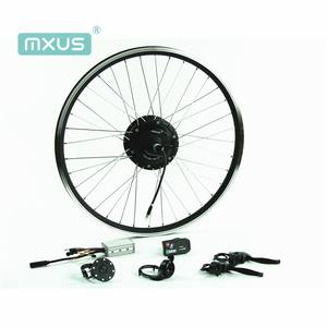 2019 MXUS high torque 36v 350w e-bike motor kit with battery