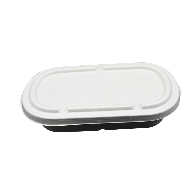Disposable Takeout Food Containers