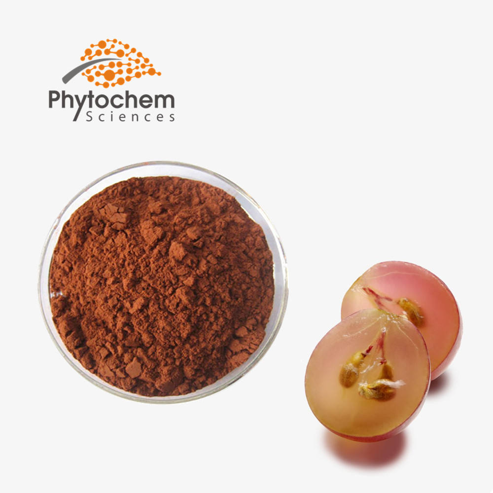 Free sample manufacturers Whitening 95% anthocyanin 40% Polyphenol red wine food extract powder Grape Seed Extract