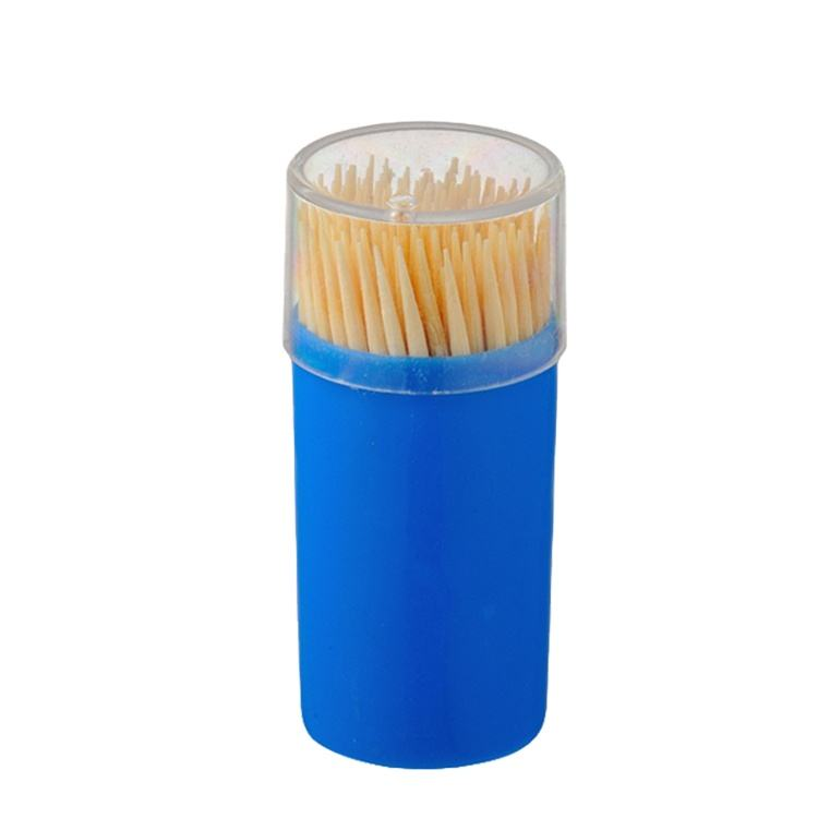 Cheap price two sharpes disposable bamboo toothpick in plastic containers