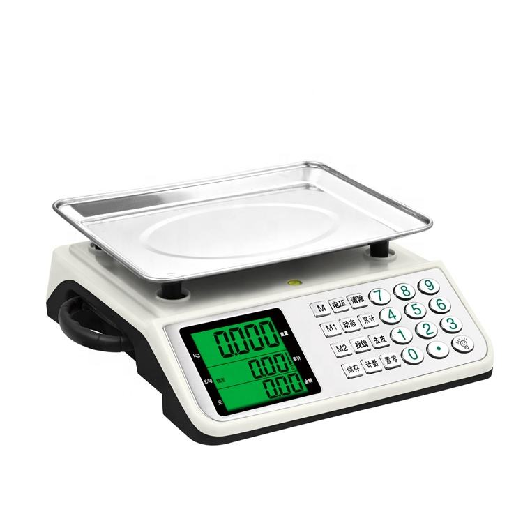 High Reputation Proper Price Portable Electronic Scale With Handle