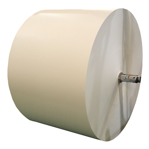 High quality Paper Cup paper Raw Material PE Coated Paper Roll