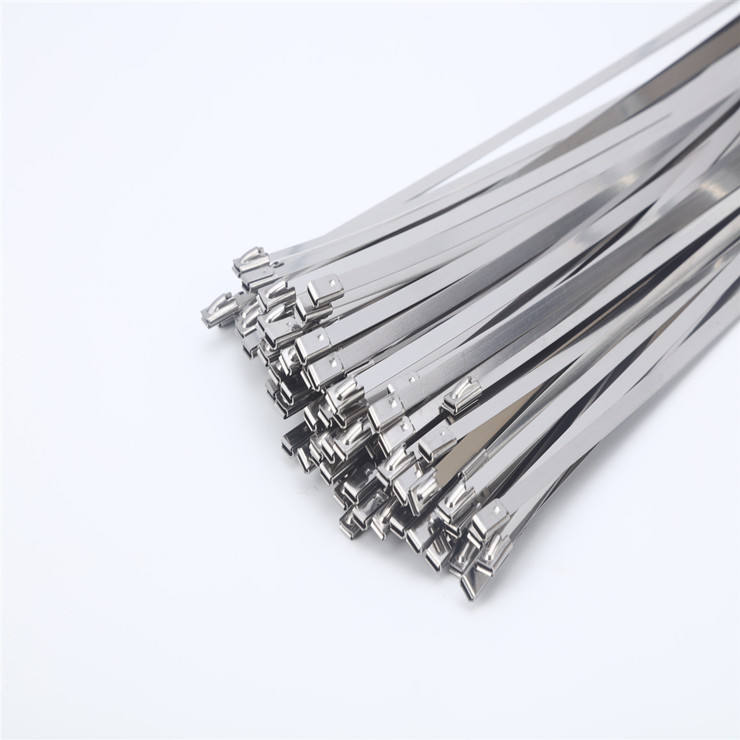 EPOXY COATED SS304 316 Stainless Steel Cable Ties