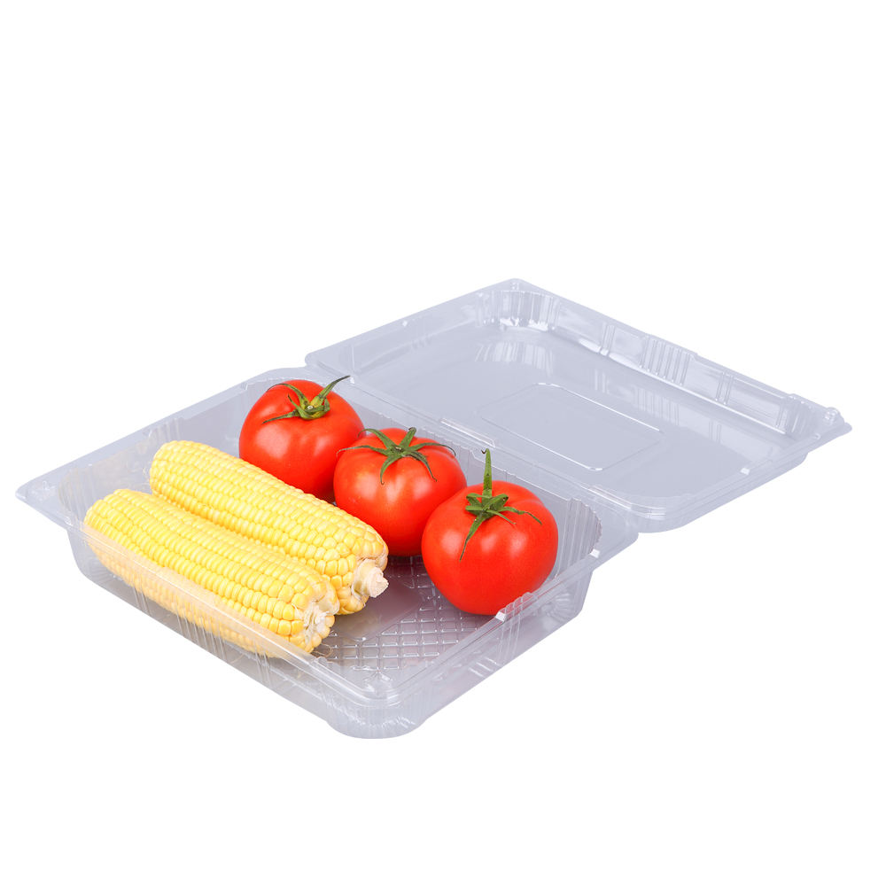 Oem Design Fashionable Blister Plastic Food Packaging Trays Containers