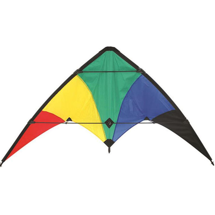 China The Kite Factory Hot Sale Cheap stunt kite for beginner