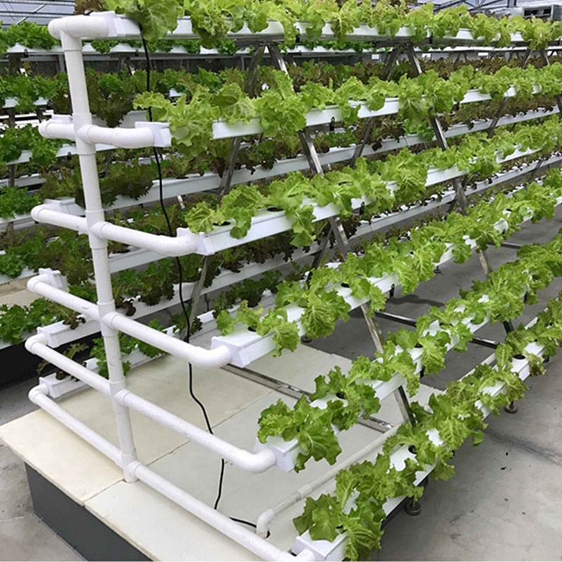 Greenhouse Farming Hydroponic Kitchen Garden Nft Gully