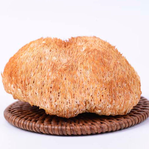 Yunnan wild planting Lion's Mane Fruiting body Pure natural edible and medicinal polish wild dried hericium erinaceus mushroom