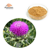 Private label 100% Natural Milk Thistle P.E./Milk Thistle Seed Extract/Silymarin powder 80%