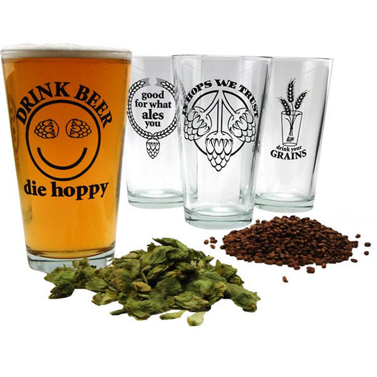 16 Oz Hopspeak Bier Pint Glas Collection - Set Van 4