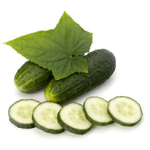 Wholesale Perfect Pact Fresh Cucumbers sourced from family farms in the USA