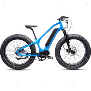 2020 New Arrivals China Ansbern Bafang MM G510 48V 750W/1000W Cheap Mid Drive Fat Tire Electric Bike Mountain