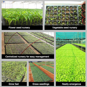 Thick Heavy Duty 550 x 280mm Black Plastic Propagation Seed Flat Tray No Holes Rice seedling trays