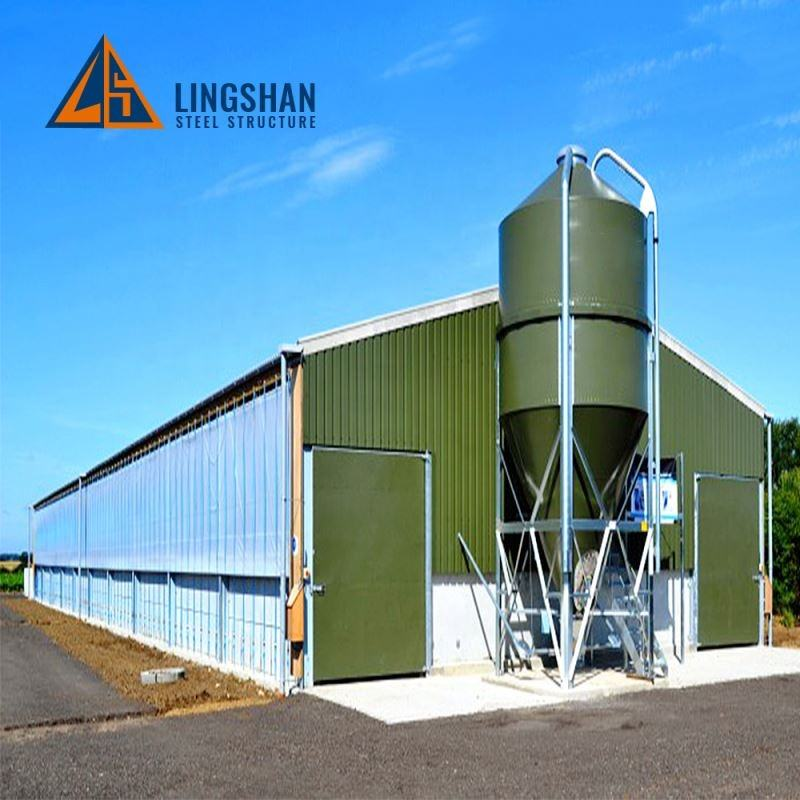 China Design Low Cost Steel Structure Industrial Chicken House Sheds For Poultry Farm