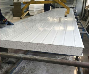 EPS Sandwich Panel EPS Dak En Wall Panel Schone Kamer Panel