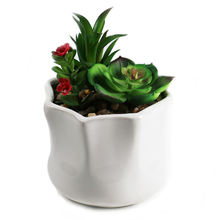 Succulent plant pot plastic  artificial mini succulents  in  a small nice white pot for home and office decoration